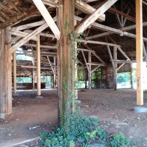 Interior aspect of the old sawmill before being reformed by IASO
