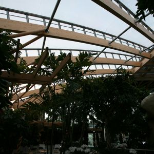 ETFE covered spa ceiling